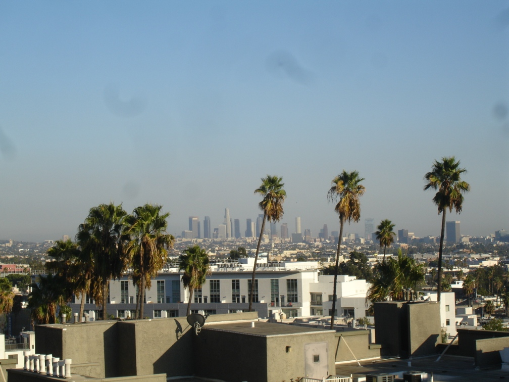 View of downtown LA from the roof of the apartment building